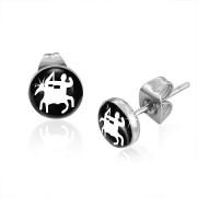 Cercei din Inox SSE-028