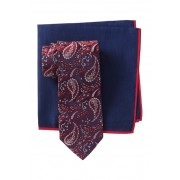 Ted Baker London Silk Tonal Paisley Tie Pocket Square Set RED