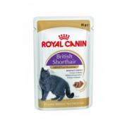 Royal Canin British Shorthair 12*85g