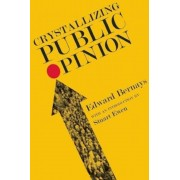 Crystallizing Public Opinion, Paperback