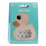 Hevea Anneau de dentition Hevea - Kawan caneton