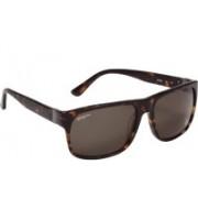 Salvatore Ferragamo Wayfarer Sunglasses(Green)