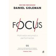 Focus , Ed a II-a/Daniel Goleman