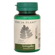 Astragalus 60cpr Dacia Plant