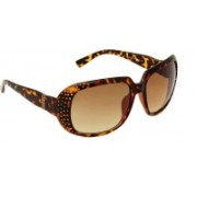 6by6 Over-sized Sunglasses(Brown)