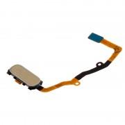 Avizar Repuesto Botón Home Dorado con Banda de Conexión para Samsung Galaxy S7 Edge