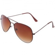Agera Ag1001 Brown With Gradient Brown Lens Aviator Sunglass