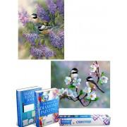 Crafterman™ Diamond Painting Volwassenen VOORDEEL SET VAN 2 STUKS - Vogeltjes op een tak & vogels op bloemen 30x40cm - volledige bedekking - vierkante steentjes - hobby pakket - Met 2 E-books