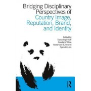 Bridging Disciplinary Perspectives of Country Image: Reputation, Brand, and Identity