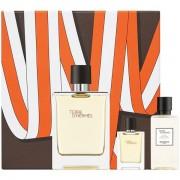 Hermes Terre D'Hermes Комплект (EDT 100ml + EDT 5ml + AS Balm 40ml) за Мъже