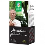Meridian Plaman Tinctura 100 ml