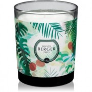 Maison Berger Paris Immersion Lychee Paradise lumânare parfumată 240 g