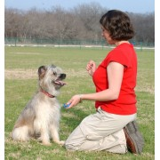 Clicker pentru dresaj canin Academia Starmark