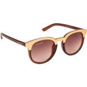 Danny Daze Round D-4008-C2 Sunglasses