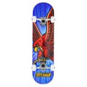 Tony Hawk Komplett Skateboard Tony Hawk 180 Series (King Hawk Mini)