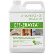 Detergent EFF-ERAYZA™ 946 mL