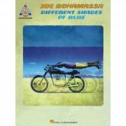Hal Leonard Joe Bonamassa: Different Shades Of Blue
