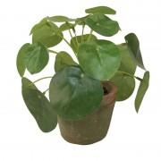 Bellatio flowers & plants Kunstplant pilea groen in pot 13 cm