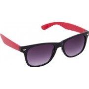 Blackburn Wayfarer Sunglasses(Violet)