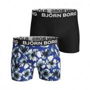 Björn Borg Hibisku Shorts 2-pack L