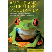 Amphibians and Reptiles of Costa Rica: A Pocket Guide, Paperback