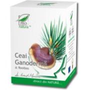 Ceai de ganoderma & rooibos 20plicuri PRO NATURA