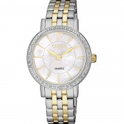 Ceas Citizen Basic EL3044-89D