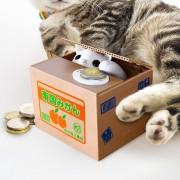 Gizzys Kitty Bank - Spaarpot