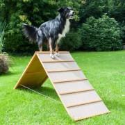 PROCYON Dog Agility A-Wand