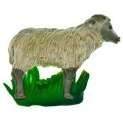 Owca - magnes