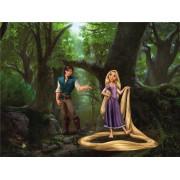 Fototapeta detská FTDXXL 0244 Rapunzel Disney, princezná, papierová , 360x255 cm - 4 dielna