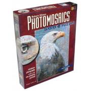 Robert Silvers Photomosaics 500 Piece Puzzle: Bald Eagle