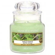 Yankee Candle Wild Mint - Small Jar, Yankee Candle