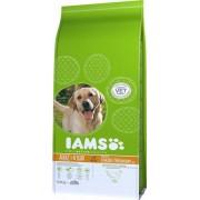IAMS ProActive Health Dog Adult Light Sterilized/Overweight 12kg
