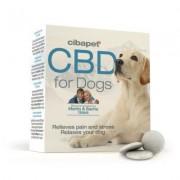 Cibdol Pastilles de CBD 4% pour chiens (x55) de la marque Cibapet