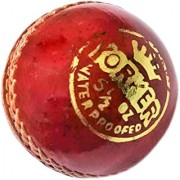 GENERIC Leather Cricket Yorker Ball for Practice Set of 1 PC