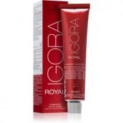 Schwarzkopf Professional IGORA Royal culoare par culoare 6-5 60 ml
