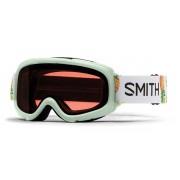 Smith Goggles Skibrillen Smith GAMBLER Kids GM3EICP19