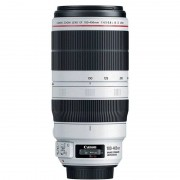 Canon Objetivo EF 100-400mm F4.5-5.6L IS II USM