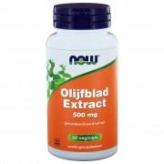 NOW Foods Olijfblad Extract 500 mg