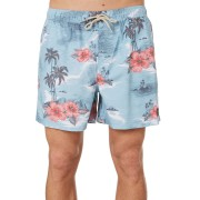 Rip Curl Dreamers Volley Mens Boardshort Blue Red