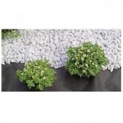 Folie microporoasa pentru protectie HortyAgryl, Latime 3.2 m, 50 grame pe mp, culoare neagra