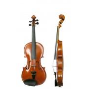 Vioara Grade Violini