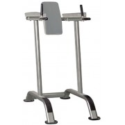Aparat Fitness pentru abdomen si triceps Impulse Fitness IT 7010 (Gri)