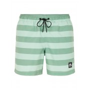 J.LINDEBERG Banks Stripe Swim Shorts Man Grön