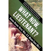 What Now, Lieutenant?: Leadership Forged from Events in Vietnam, Desert Storm and Beyond, Paperback