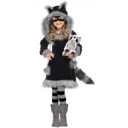 Fun World Sweet Raccoon Dress Costume Child: Large (12-14)