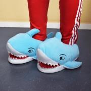 Haaien pantoffels