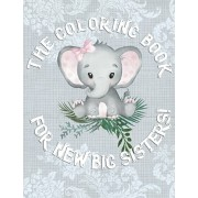 The Coloring Book For New Big Sisters: Adorable New Baby Color Book for Big Sisters Ages 2-6, Perfect Gift for Big Sisters with a New Sibling!, Paperback/Big Sister Rainbow Creative