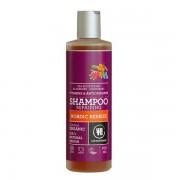 Urtekram Nordic Berries Shampoo 250 ml